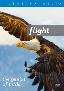 flightthegeniusofbirds